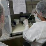 Coronavírus: Cinco pessoas estão curadas da Covid-19 em Anápolis